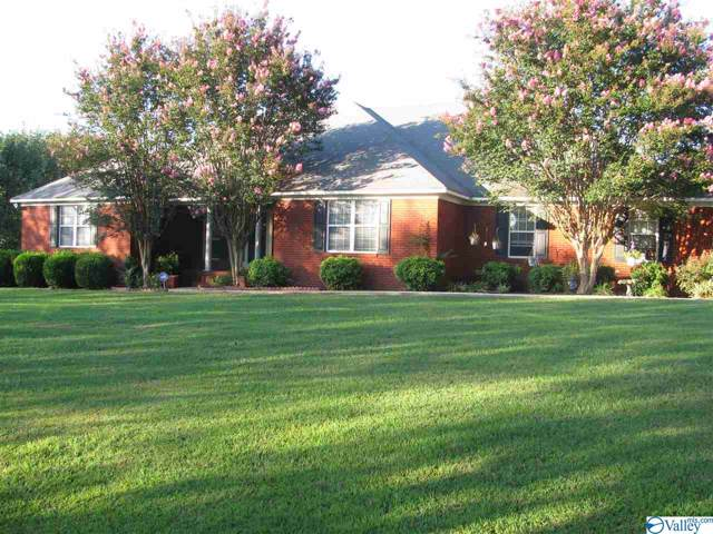 811 County Road 379, Trinity, AL 35673 (MLS #1127637) :: Amanda Howard Sotheby's International Realty