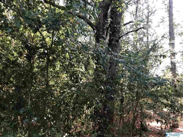 0 Browns Valley Road, Guntersville, AL 35976 (MLS #1128096) :: Amanda Howard Sotheby's International Realty