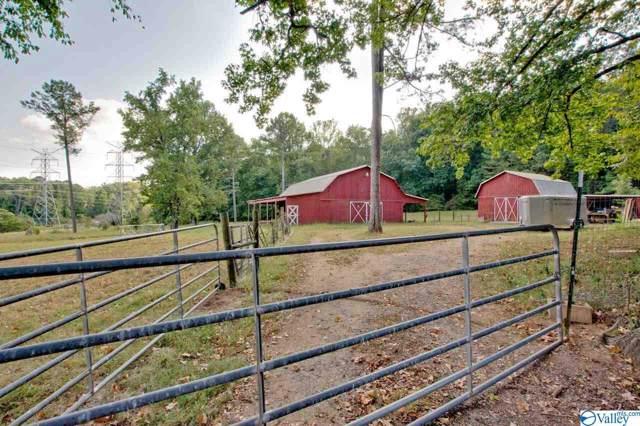 152 Anchorage Lane, Brownsboro, AL 35741 (MLS #1128972) :: Capstone Realty