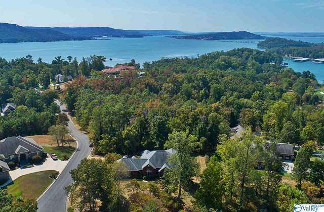 1015 Heritage Drive, Guntersville, AL 35976 (MLS #1129144) :: Amanda Howard Sotheby's International Realty