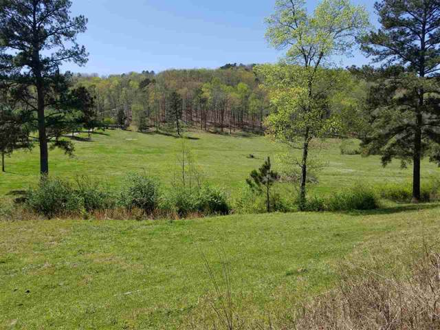 0 County Road 813, Cullman, AL 35057 (MLS #1129681) :: Capstone Realty
