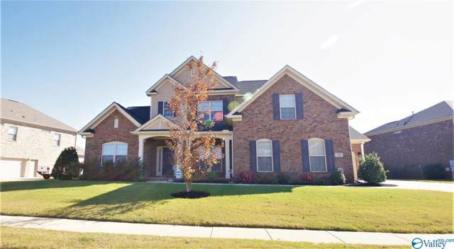 19 Walnut Cove Boulevard, Huntsville, AL 35824 (MLS #1130920) :: Capstone Realty