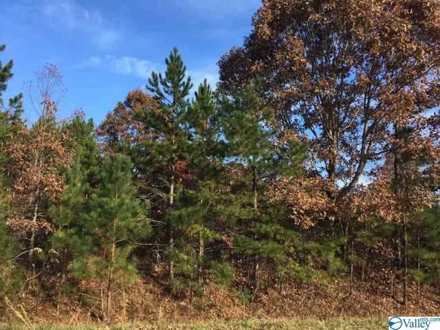 3774 County Road 106, Mentone, AL 35984 (MLS #1132226) :: Weiss Lake Alabama Real Estate
