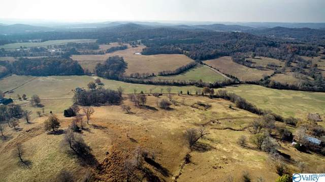 685 Old Stage Road, Ardmore, TN 38449 (MLS #1132283) :: The Pugh Group RE/MAX Alliance