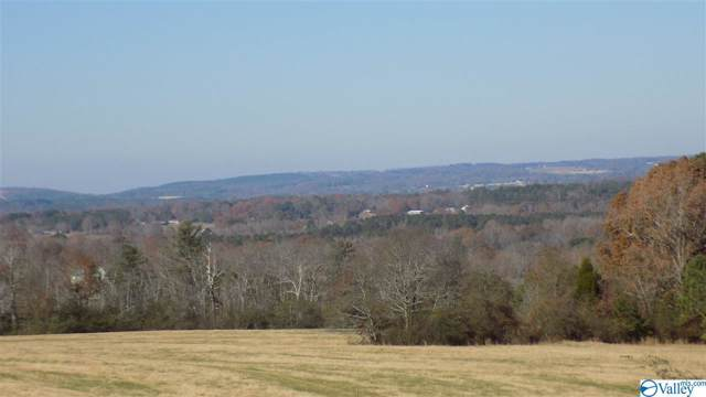 Lot 8 County Road 674, Leesburg, AL 35983 (MLS #1132538) :: The Pugh Group RE/MAX Alliance