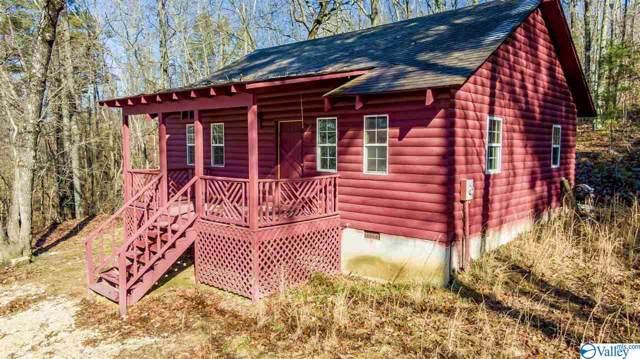 470 County Road 153, Fort Payne, AL 35967 (MLS #1133161) :: Amanda Howard Sotheby's International Realty