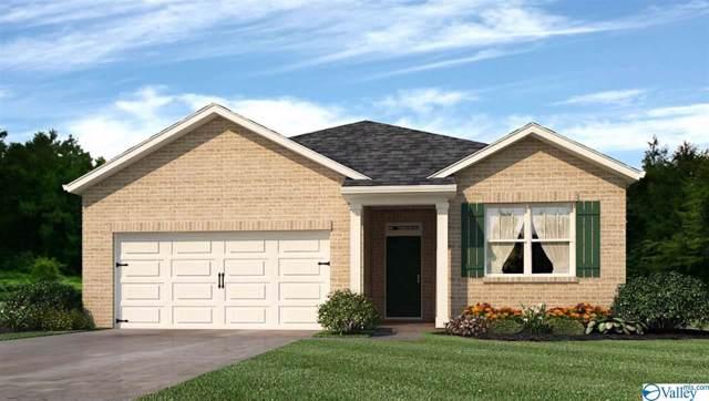 194 Heritage Brook Drive, Madison, AL 35757 (MLS #1135507) :: Capstone Realty