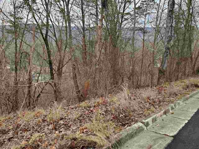 Lot 14 Smoke Rise Road, Huntsville, AL 35802 (MLS #1135641) :: Amanda Howard Sotheby's International Realty