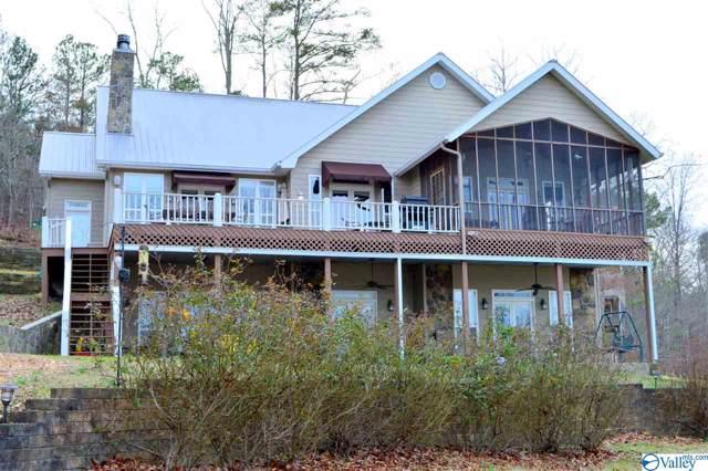 355 County Road 594, Leesburg, AL 35983 (MLS #1135862) :: Capstone Realty
