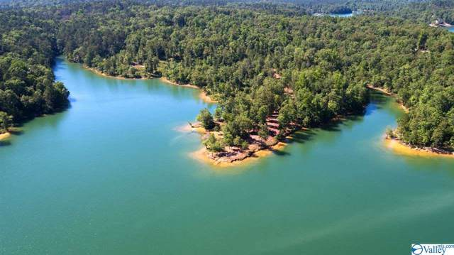 5 Edgewater Bend, Double Springs, AL 35553 (MLS #1136313) :: Amanda Howard Sotheby's International Realty
