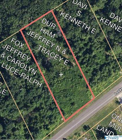 00 Lookout Mountain Drive, Scottsboro, AL 35768 (MLS #1136649) :: RE/MAX Distinctive | Lowrey Team