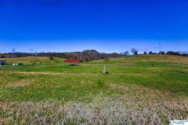 0 Pulaski Hwy, Frankewing, TN 38459 (MLS #1136889) :: Legend Realty