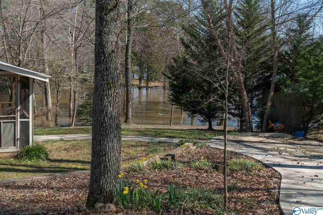 154 Scenic Drive, Scottsboro, AL 35752 (MLS #1137182) :: Capstone Realty