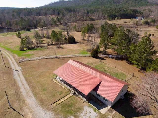 1430 Dripping Rock Road, Piedmont, AL 36272 (MLS #1137317) :: Weiss Lake Alabama Real Estate
