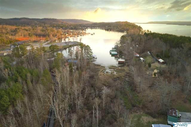 Lot 4 & 5 Pine Island Point, Scottsboro, AL 35769 (MLS #1138070) :: Rebecca Lowrey Group