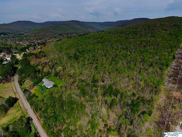 90 Dug Hill Road, Brownsboro, AL 35802 (MLS #1140195) :: Capstone Realty
