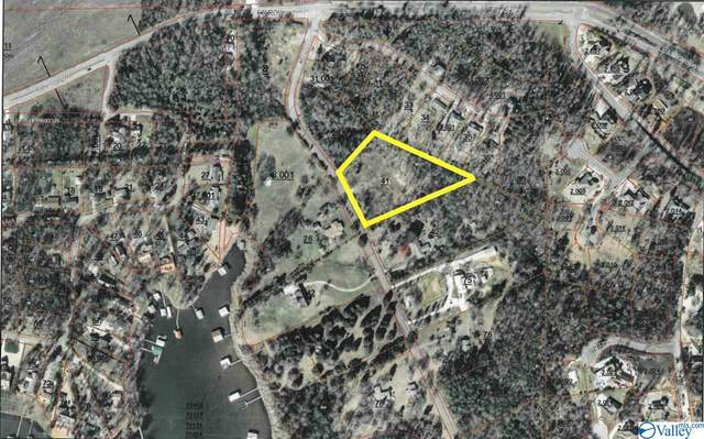 Lot 95 Buck Island Drive, Guntersville, AL 35976 (MLS #1140595) :: RE/MAX Distinctive | Lowrey Team