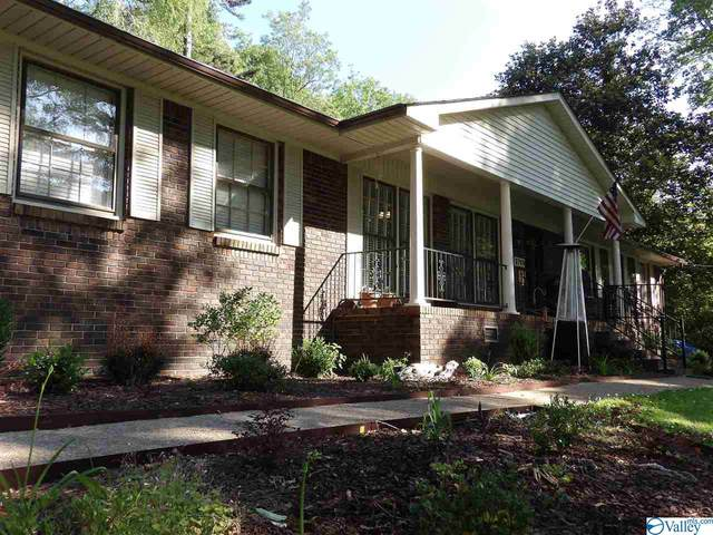 2709 Willow Beach Road, Guntersville, AL 35976 (MLS #1142962) :: Legend Realty
