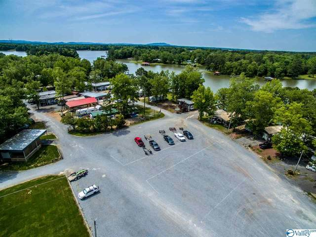1210 County Road 131, Cedar Bluff, AL 35959 (MLS #1143327) :: MarMac Real Estate