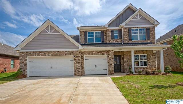 13 Cheshire Cove Lane, Meridianville, AL 35759 (MLS #1143759) :: Revolved Realty Madison