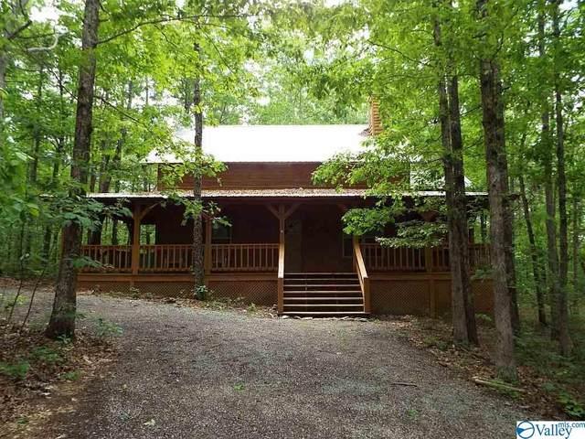 3292 County Road 642, Mentone, AL 35984 (MLS #1143954) :: Capstone Realty