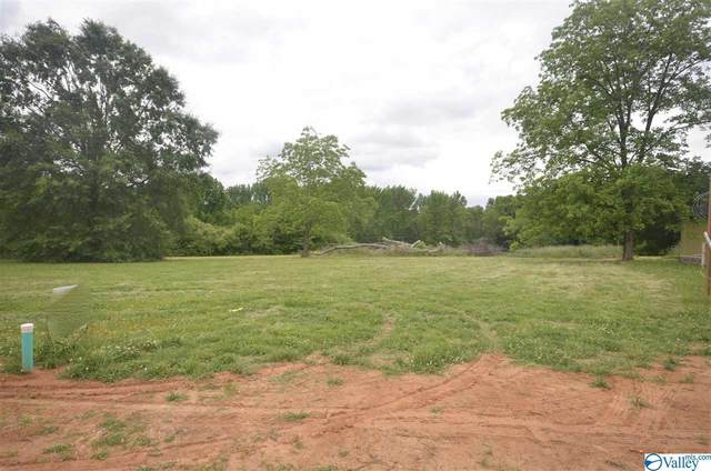 1902 NW Peach Orchard Road, Hartselle, AL 35640 (MLS #1143999) :: MarMac Real Estate
