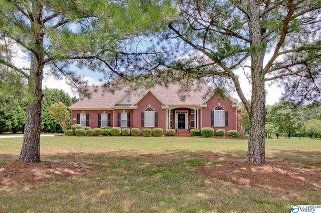 147 Whitt Haven Drive, Toney, AL 35773 (MLS #1146718) :: Revolved Realty Madison