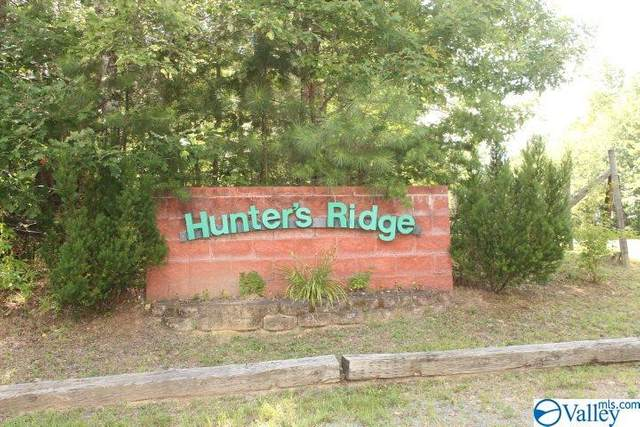 lot 6 Hunters Ridge Road, Mentone, AL 35984 (MLS #1148791) :: Rebecca Lowrey Group