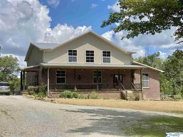 638 County Road 362, Trinity, AL 35673 (MLS #1149578) :: MarMac Real Estate