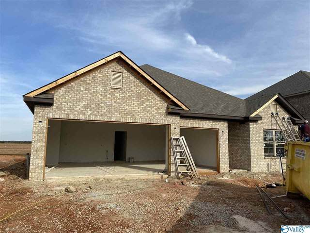 271 Holt Street, Meridianville, AL 35759 (MLS #1150156) :: Coldwell Banker of the Valley