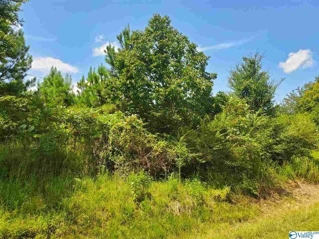 000 County Road 822, Collinsville, AL 35961 (MLS #1150289) :: LocAL Realty