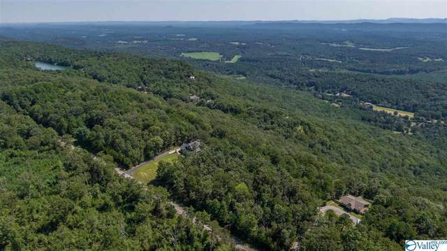 65 County Road 103, Mentone, AL 35984 (MLS #1150850) :: The Pugh Group RE/MAX Alliance
