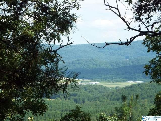 17 Bluebird Drive, Sylvania, AL 35967 (MLS #1151053) :: MarMac Real Estate