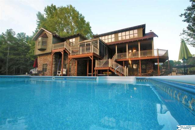 28 County Road 1335, Vinemont, AL 35179 (MLS #1151262) :: Coldwell Banker of the Valley