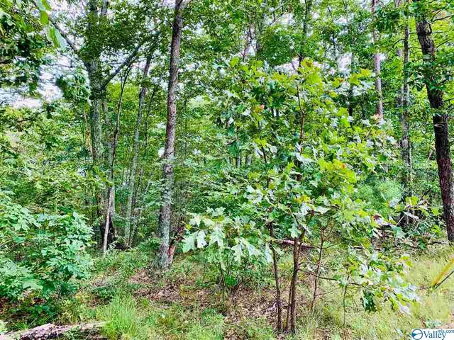 lot 6 County Road 871, Gaylesville, AL 35973 (MLS #1151452) :: Coldwell Banker of the Valley