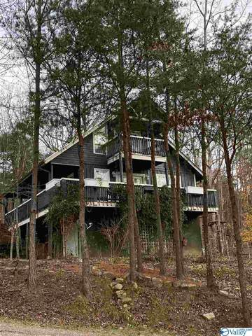 2494 County Road 166 (Citadel Rock Road), Fort Payne, AL 35967 (MLS #1151606) :: Coldwell Banker of the Valley