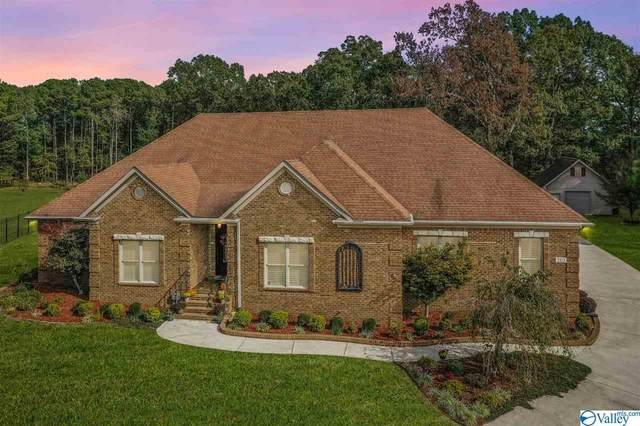 203 Chris Ryan Lane, Toney, AL 35773 (MLS #1152994) :: MarMac Real Estate