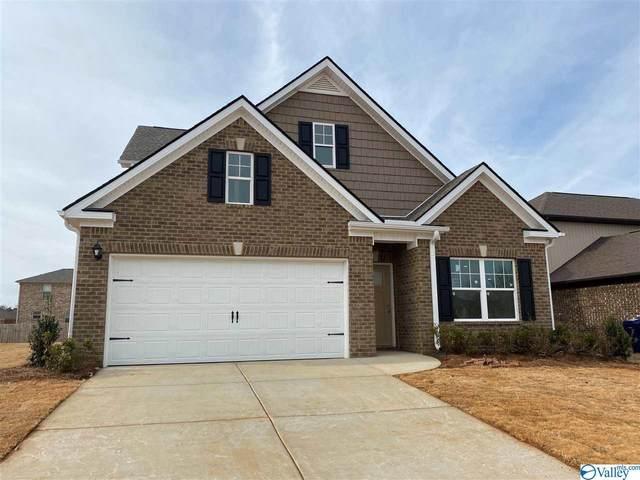 116 Morning Dew Road, Toney, AL 35773 (MLS #1153982) :: MarMac Real Estate