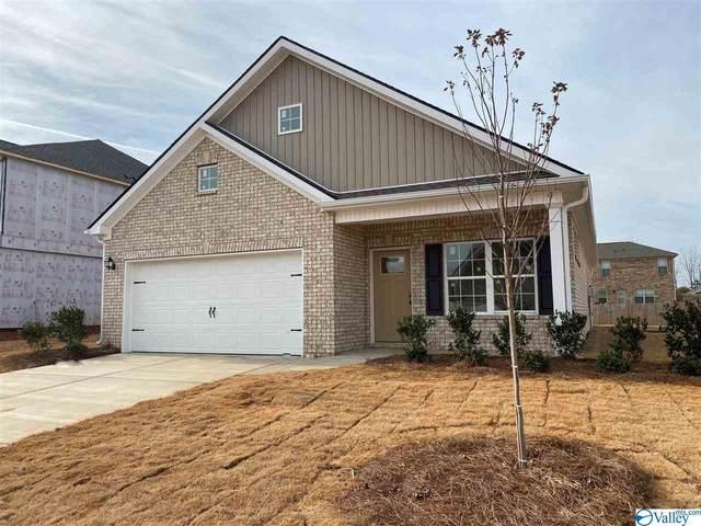 118 Morning Dew Road, Toney, AL 35773 (MLS #1153995) :: MarMac Real Estate