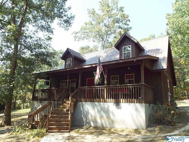 646b County Road 639, Mentone, AL 35984 (MLS #1154082) :: Coldwell Banker of the Valley