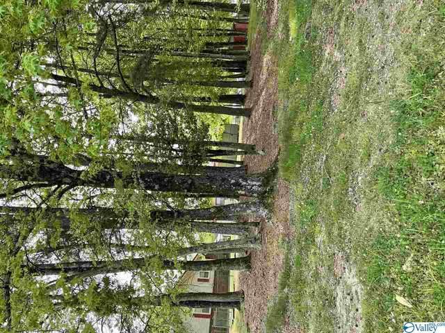 W Meighan Boulevard, Gadsden, AL 35904 (MLS #1154229) :: Green Real Estate
