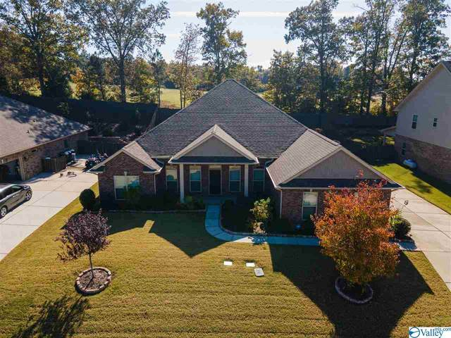 111 Chesnut Heath Court, Madison, AL 35756 (MLS #1156525) :: Southern Shade Realty
