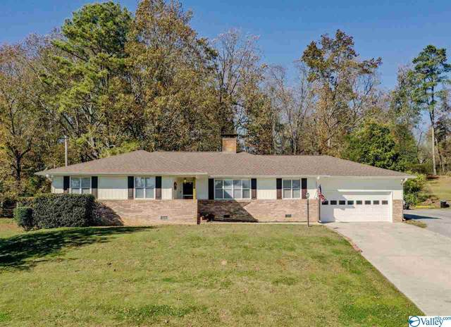45 County Road 1329, Vinemont, AL 35179 (MLS #1157478) :: MarMac Real Estate