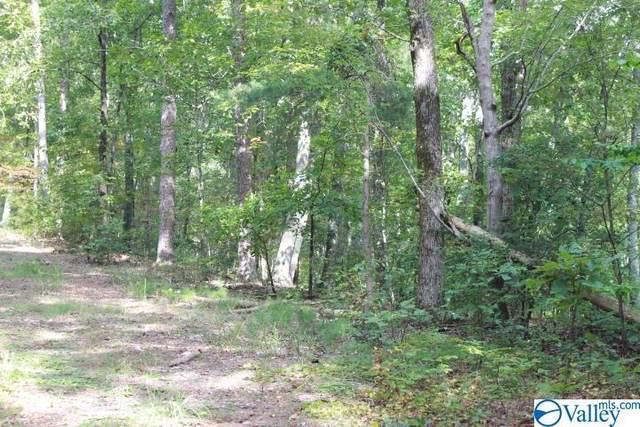 34th Street, Fort Payne, AL 35967 (MLS #1771369) :: Green Real Estate
