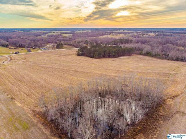 34118 Alabama Highway 99, Anderson, AL 35610 (MLS #1772717) :: Southern Shade Realty
