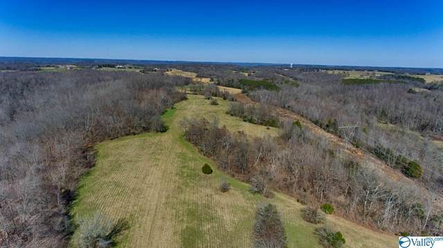 0 Mclemore Road, Ardmore, TN 38449 (MLS #1773130) :: Legend Realty