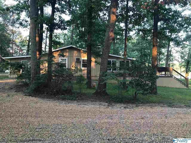 385 County Road 907, Cedar Bluff, AL 35959 (MLS #1774117) :: MarMac Real Estate