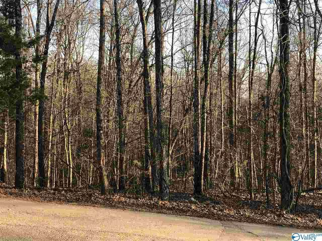 lot 38 Sparks Street, Trinity, AL 35673 (MLS #1774159) :: Green Real Estate