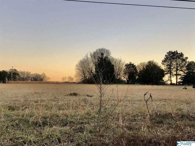 4616 County Road 316, Trinity, AL 35673 (MLS #1775046) :: Southern Shade Realty