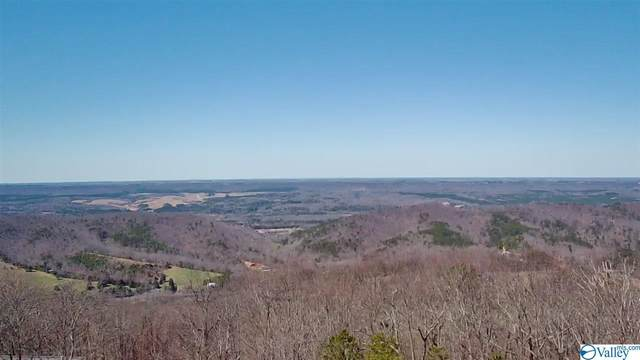 Lot 28 County Road 1025, Fort Payne, AL 35967 (MLS #1775483) :: Southern Shade Realty